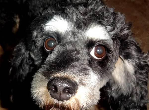 Bonnie's Homemade Dog Kibble