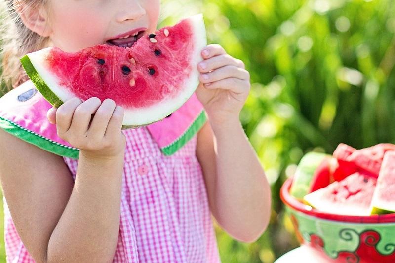 A obesidade infantil é resultado de uma série complexa de fatores genéticos, comportamentais, que atuam em vários contextos: familiar, escolar, social.  (Fonte: Pixabay/JillWellington/Reprodução)