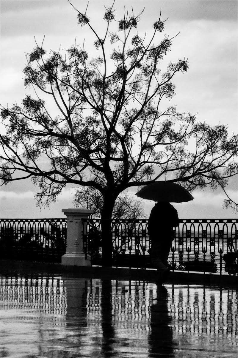 A spasso sotto la pioggia di Fiorenza Aldo Photo