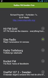 Radios FM Sweden Free - náhled