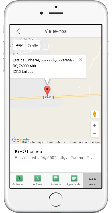 IGRO Leilões- screenshot