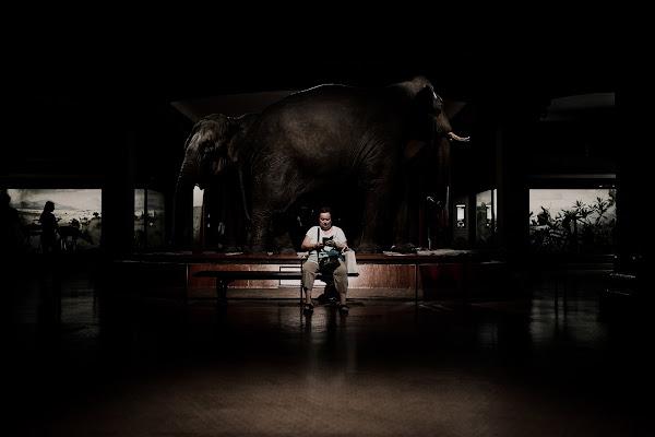 La donna elefante di th3storyteller