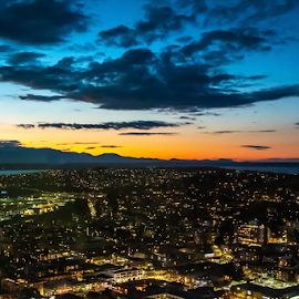 by Darren Sutherland - City,  Street & Park  Skylines