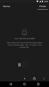 Opera Mini – fast web browser beta v38.0.2254.132736 APK 6