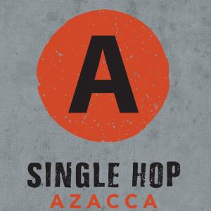 Logo of Hermitage Azacca