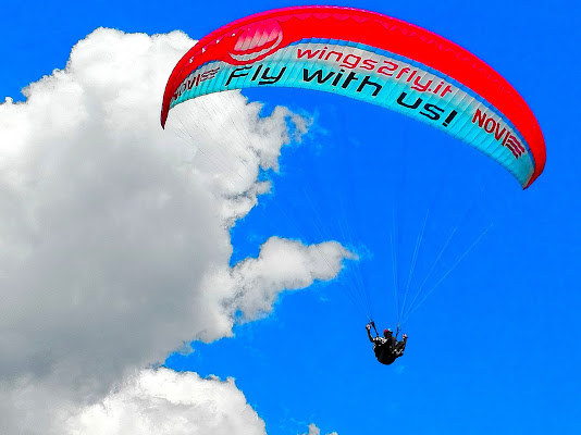 volare..oh oh di federchic