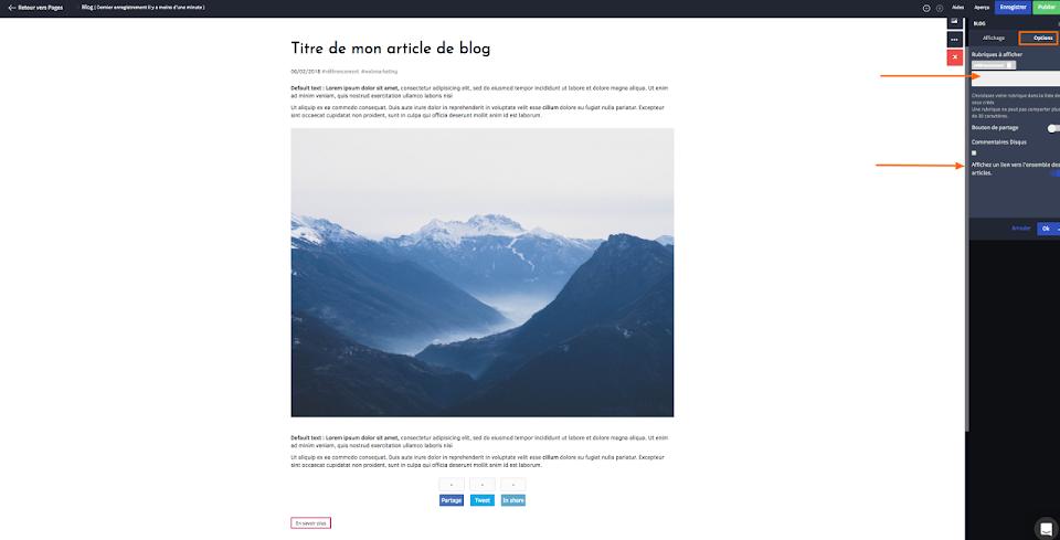 personnaliser l'apparence de mon blog