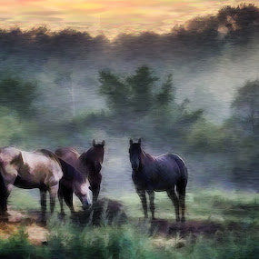 Night of the Horses by Val Ewing - Digital Art Things ( foggy, painted, horses, digital art )