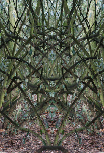 amandine-crozat-totem-2