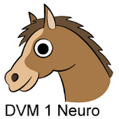 DVM 1st Yr Quiz - Neurology