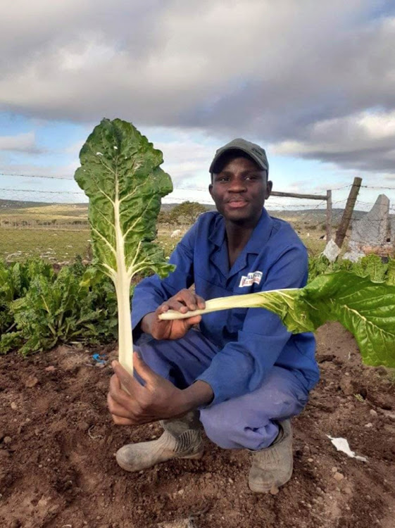 Nkosinathi Makamela, 20, a young farmer from Dutywa in the Eastern Cape