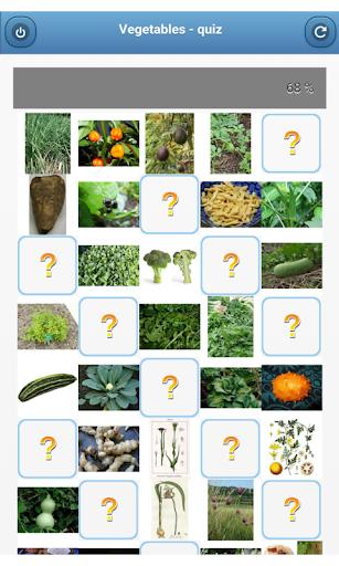 Vegetables - quiz