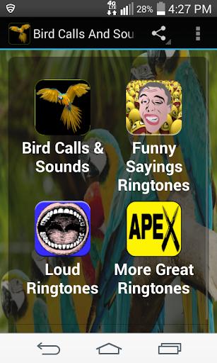 鳥は無料サウンド