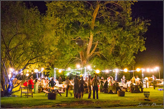 Photo: Wedding celebration under the Oak tree