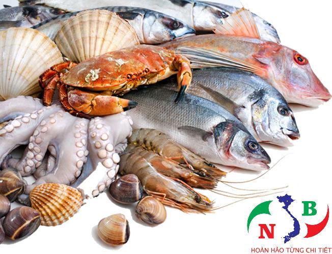 Kho lạnh bảo quản hải sản -Yêu cầu khi thiết kế mặt bằng