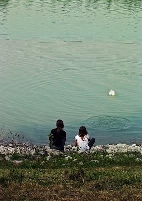 Far cerchi nell'acqua e non chieder di più.... di GiBi