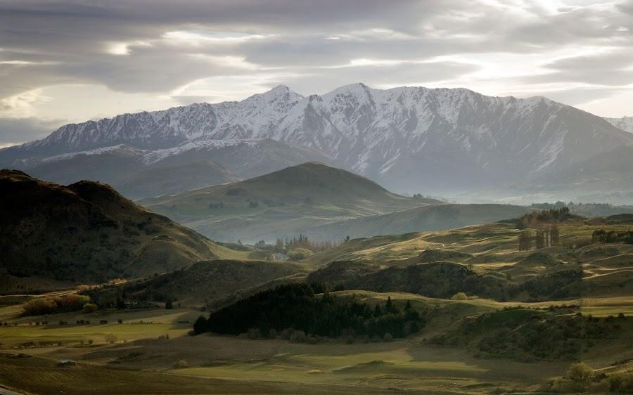 Spring in NZ by Alexander Shafir - Landscapes Mountains & Hills
