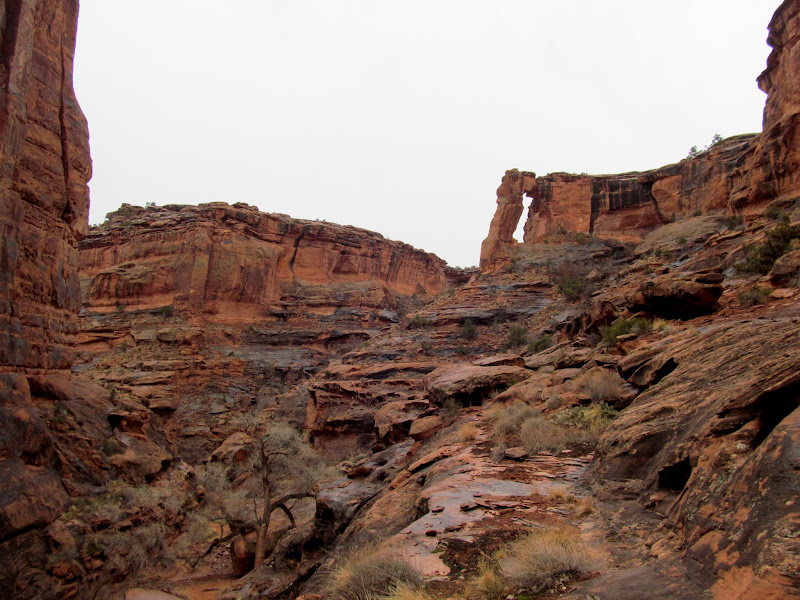 Photo: Hunter Canyon arch