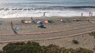 Situación de la playa tras perder varios metros de arena.