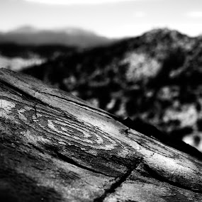 Timeless by Roch Hart - Black & White Objects & Still Life ( prehistoric, mystery, black and white, ancestral pueblo native, bw, writing, rock, rock art, native american, history, ancient, timeless, roch hart )