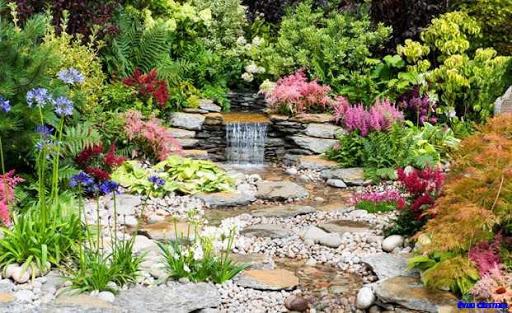庭のインスピレーションのアイデア