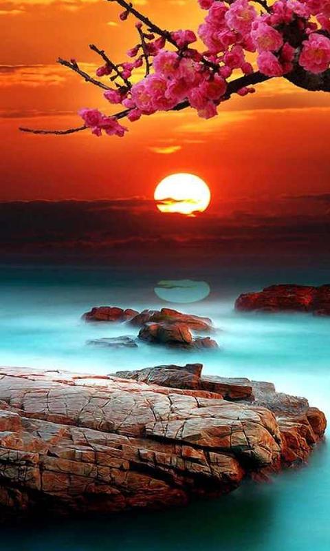 خلفيات الطبيعة جميلة Tabiea Blog