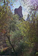 Photo: Pillar - Pinnaclesational Park, CA