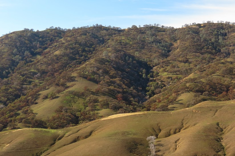 This image shows burnt hills above Putah Creek.