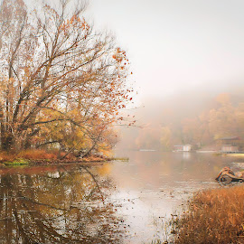 by Dana Johnson - Landscapes Waterscapes ( reflection, waterscape, autumn, lake, landscape, fog )