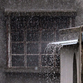 The Rain by Udaybhanu Sarkar - Abstract Water Drops & Splashes ( roof, water, water drops, window, rain,  )