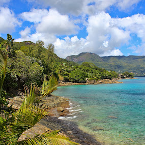 Paradise by Jake Barrows - Landscapes Beaches ( water, beach, aqua, paradise, island )