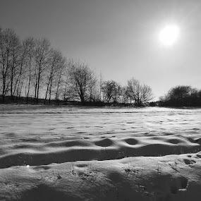 Landscape  by Helga Be - Black & White Landscapes ( winter sun,  )