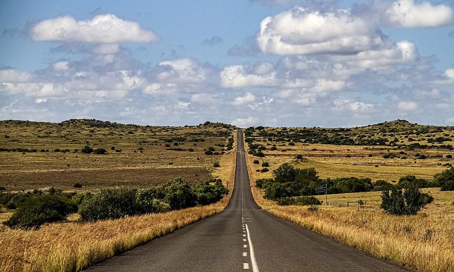 Op Pad na Lady Senekal by Elna Geringer - Transportation Roads