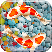 Fish Aquarium Live Wallpaper Koi Fish Application