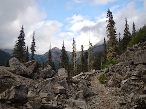 Photo: Hiking along the PCT to camp