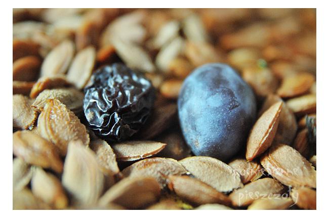 Domowe śliwki suszone - wersja dietetyczna
