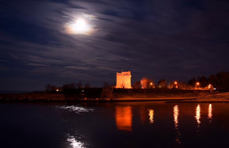 Il castello addormentato di irina sirbu