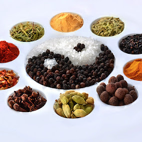 spices by Marianna Armata - Food & Drink Ingredients ( cool, on white, spicy, marianna armata, spices, variety, colour, balance, circles, sweet, assortment, ovals, food, whole, tray, grain, palet, mild, hot, yin-yang, artist, commercial )