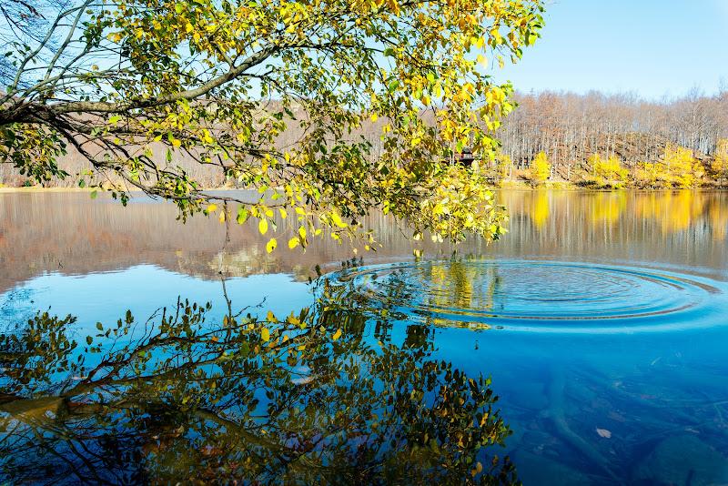 Domenica ti porterò sul lago ... di Ivan Bertusi