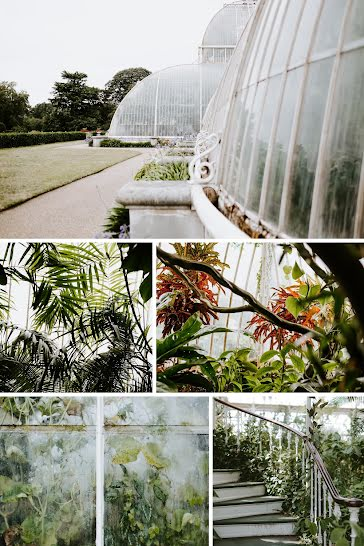 Arboretum Collage - Pinterest Pin Template