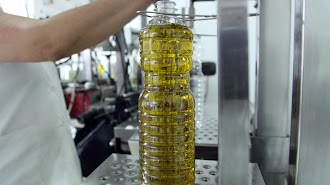 La provincia aún dispone de escasas marcas propias comercializadoras de aceite.
