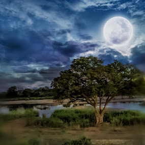Moon over Sabie River by Elna Geringer - Digital Art Places