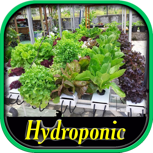 Hydroponic Systems Guide Android APK Download Free By Ramayana Studio