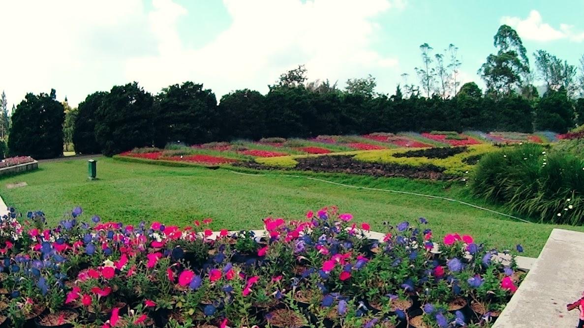 Salah satu spot Taman Bunga Nusantara