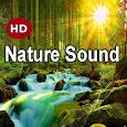 Nature sound and Meditation