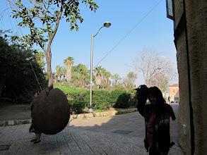 Photo: Suspended tree