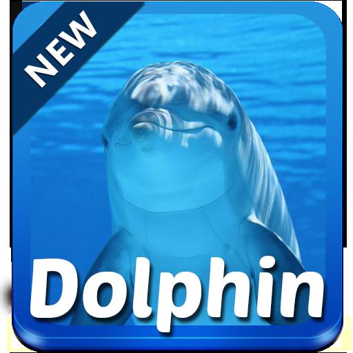 ドルフィンキーボード 個人化 App LOGO-APP試玩