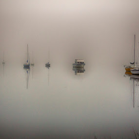 Foggy River by Keith Wood - Landscapes Waterscapes ( beaufort, kewphoto, fog, river, keith wood,  )