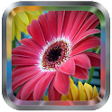 Flower Live Wallpaper icon