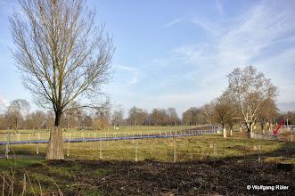 Photo: Entwittmete und eingezäunte FFH Rosensteinparkfläche für ein S21-Kreuzungsbauwerk. Rechts die Ehmannstraße